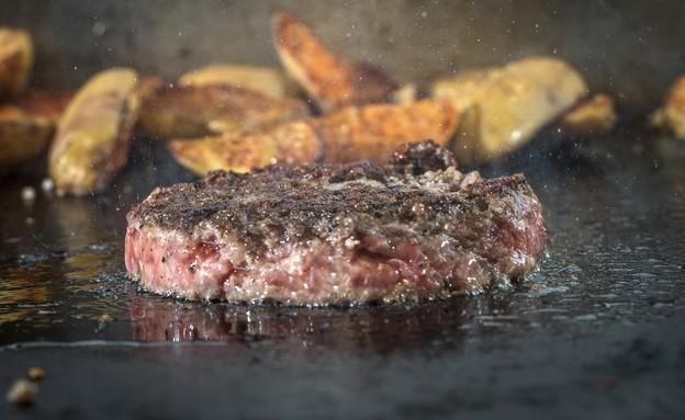האקדמיה לבשר של דלישס - המבורגר (צילום: אנטולי מיכאלו, אוכל טוב)