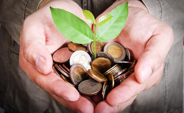 יד מחזיקה מטבעות ששתיל צומח מתוכן (אילוסטרציה: Shutterstock)