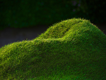 החמישייה 9.8, כורסת דשא
