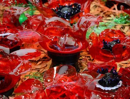 אמניות מיחזור, מירי ישראלי, מיצב סביבתי דומם צומח מפוסל מבקבוקי פל