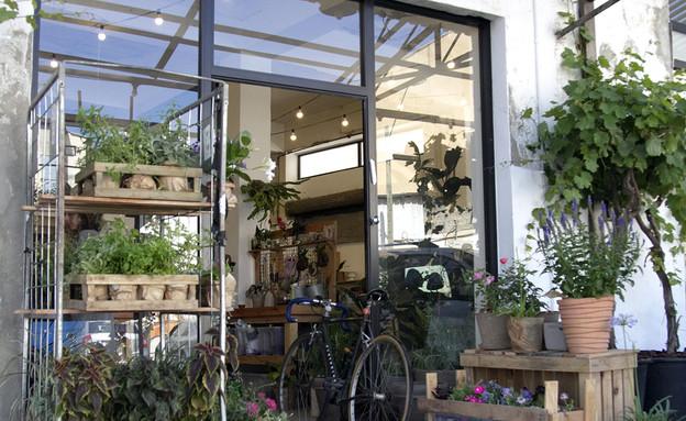 50 החנויות, שושנס ביפו (צילום: רון חיימוב ועדי ארצי)