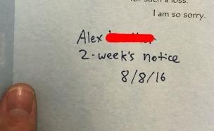 מכתב ההתפטרות הכי מוזר בעולם (צילום: צילום מסך:  IMGUR / SPRINGMINT5)