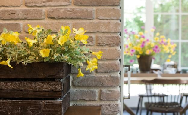 עינב גלילי, פרחים (17) (צילום: אביב קורט)