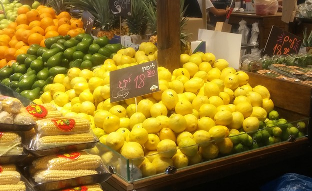 לימונים בדוכן שוק צפון בתל אביב (צילום:  שמעון איפרגן)