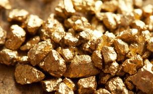 ערימה של זהב (צילום: Shutterstock)