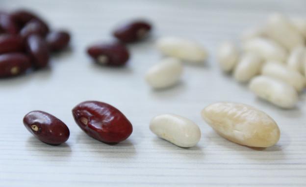 מדריך להכנת שעועית: השעועית (צילום: אסתי רותם, אוכל טוב)