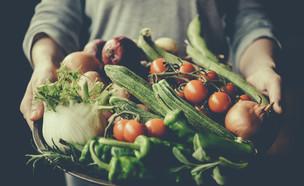 ידיים מחזיקות צלחת ירקות (צילום: Yulia Grigoryeva, Shutterstock)