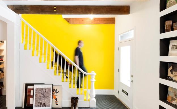 צבע מפתיע לעיצוב מקורי (צילום: Adrien Williams)