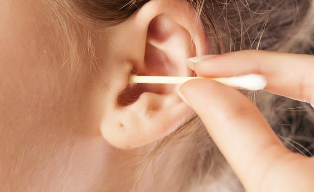 קיסם אוזניים (צילום: Vladimir Gjorgiev, Shutterstock)