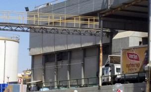 מפעל תלמה (צילום: חדשות 2)