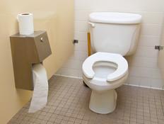 אסלה בשירותים ציבוריים (צילום: Scruggelgreen, Shutterstock)