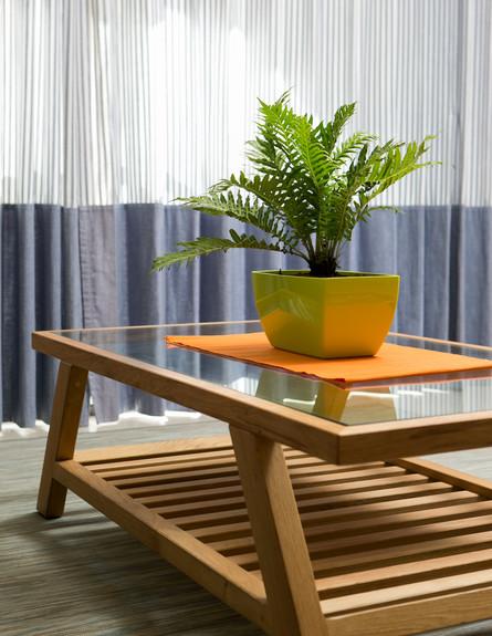 אריאלה ענבר, ג, שולחן סלון (4)