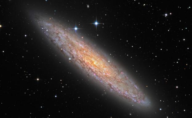 לבהות בחלל (צילום: נאסא)