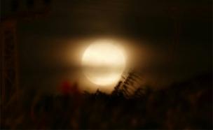 סופר מון, ירח, לילה (צילום: רפאל חיון)