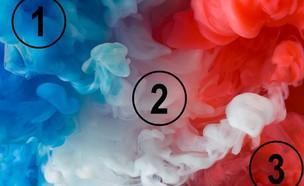 מה הצבע הבולט (צילום: playbuzz)