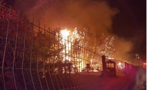דולב, אמש (צילום: אהוד אמיתון/TPS)