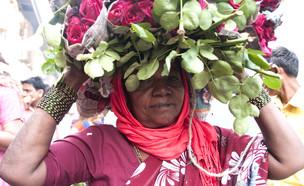אישה במומבאי (צילום: CRSHELARE, Shutterstock)