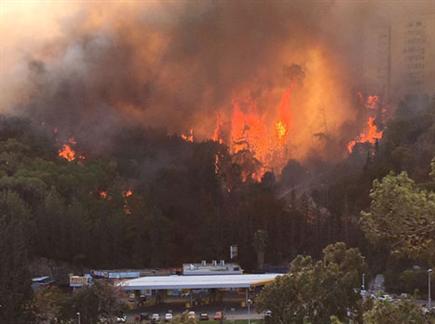 צפו בשריפה בביתו של ז'אורז'יניו (צילום: ספורט 5)