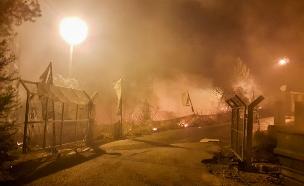 220 שריפות ביממה (צילום: Ehud Amiton/TPS)