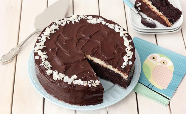 עוגת שוקולד קוקוס (צילום: ענבל לביא, אוכל טוב)