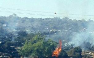 השריפה ביער חרובית, היום (צילום: דוברות המשטרה)