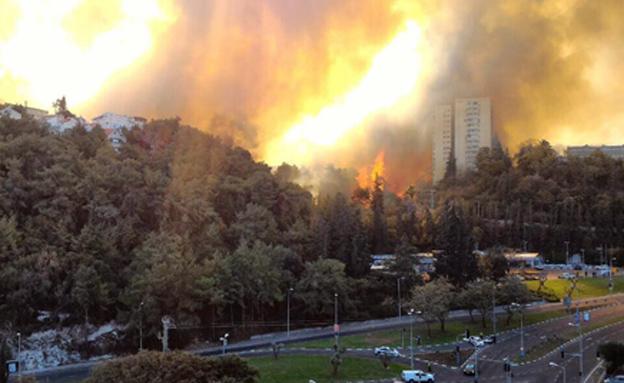 שריפה בחיפה (צילום: רן פאר)