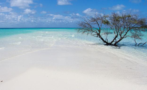 האיים המלדיביים (צילום: Anna A Tarasenko, Shutterstock)