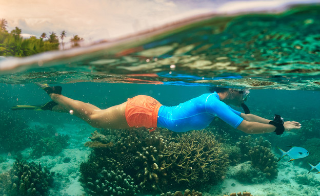צלילה באיים המלדיביים (צילום: Willyam Bradberry, Shutterstock)