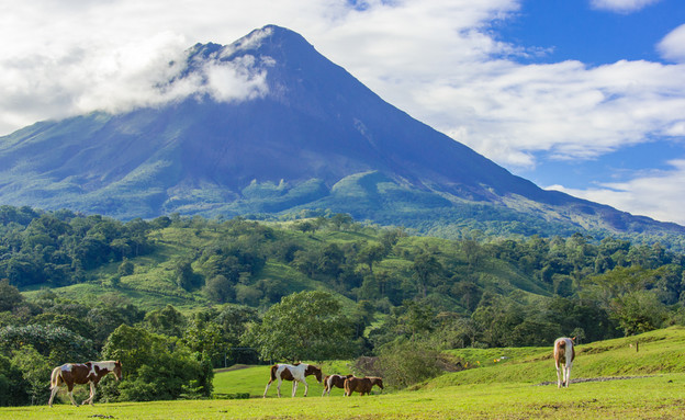 הר הגעש ארנל קוסטה ריקה (צילום: Simon Dannhauer, Shutterstock)