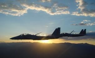"""צפו: 40 שנה למטוס ה""""בז"""" (צילום: דובר צה""""ל)"""