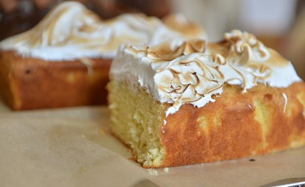 לורנץ ומינץ עוגה בחושה (צילום: אורי כהן מינץ,  יחסי ציבור )