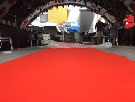 תמונות מהשטיח האדום