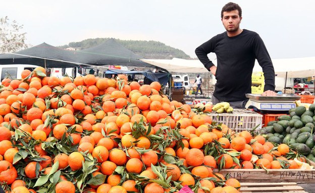 שוק תרשיחא תפוזים (צילום: ג'רמי יפה, אוכל טוב)