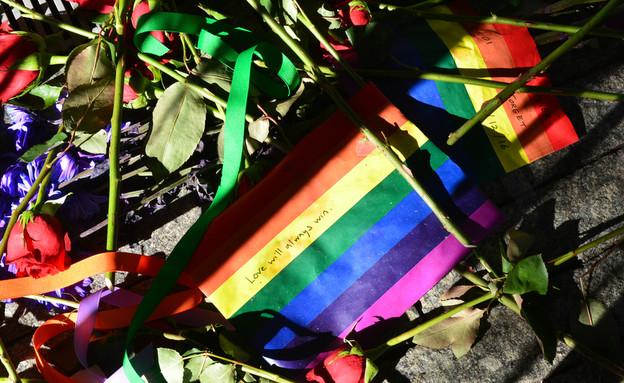 דגל גאווה ופרחים  (צילום: ShutterStock)