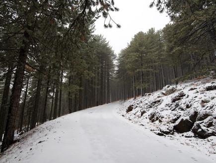 חורף על הר טרודוס