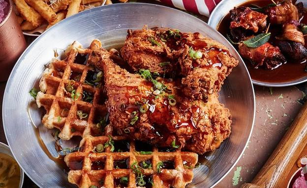 אמריקה בית ציוני אמריקה עוף  (צילום: בן יוסטר,  יחסי ציבור )