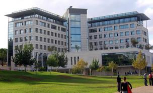 הטכניון, אוניברסיטה
