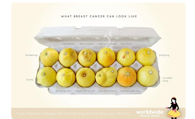 לימונים וסרטן השד (צילום: Worldwidebreastcancer.com)
