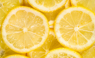 לימונים (צילום: katarinag, Shutterstock)