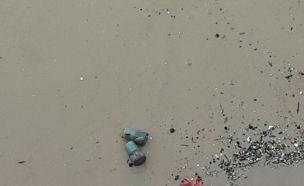 המוקשים שנשטפו אל החוף (צילום: דוברות המשטרה)