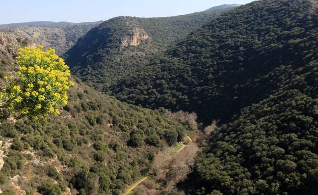 """פארק גורן מצפה מונפור תצפית על נחל כזיב (צילום: יעקב שקולניק, קק""""ל)"""
