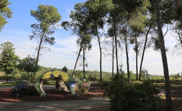 יער מלאכים (צילום: אדי ישראל, קרן קיימת לישראל)