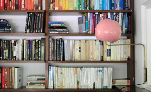 שרון ברקת, ספרייה (12) (צילום: שרון ברקת)