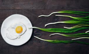 ביוץ  (צילום: Shutterstock)
