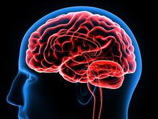 הכירו את השיטות שיכולות למנוע אלצהיימר ודמנציה