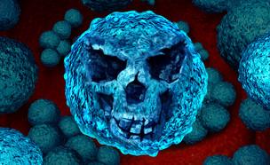 חיידק קטלני (צילום: ShutterStock)