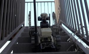 האם אלו הרובוטים שיחליפו חיילים? (צילום: חדשות 2)