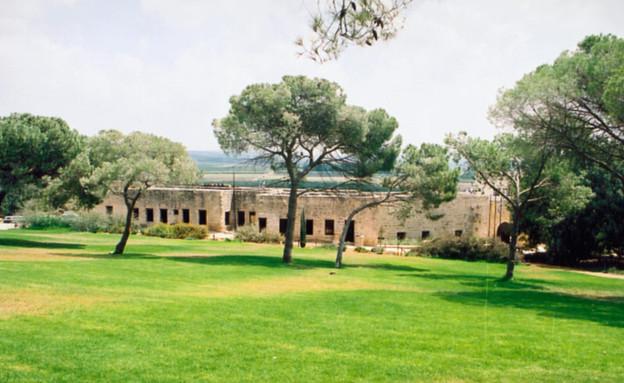 פארק שוני (צילום: ישראל סיני)