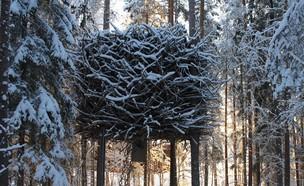 בית על העץ (צילום: treehotel.se)