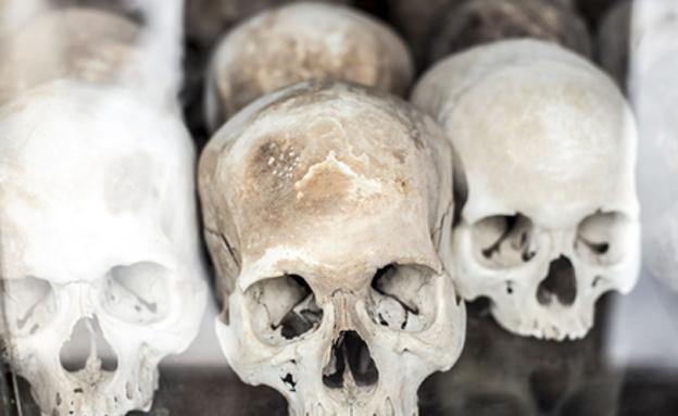 קבר אחים המוני, אילוסטרציה (צילום: 123REF)